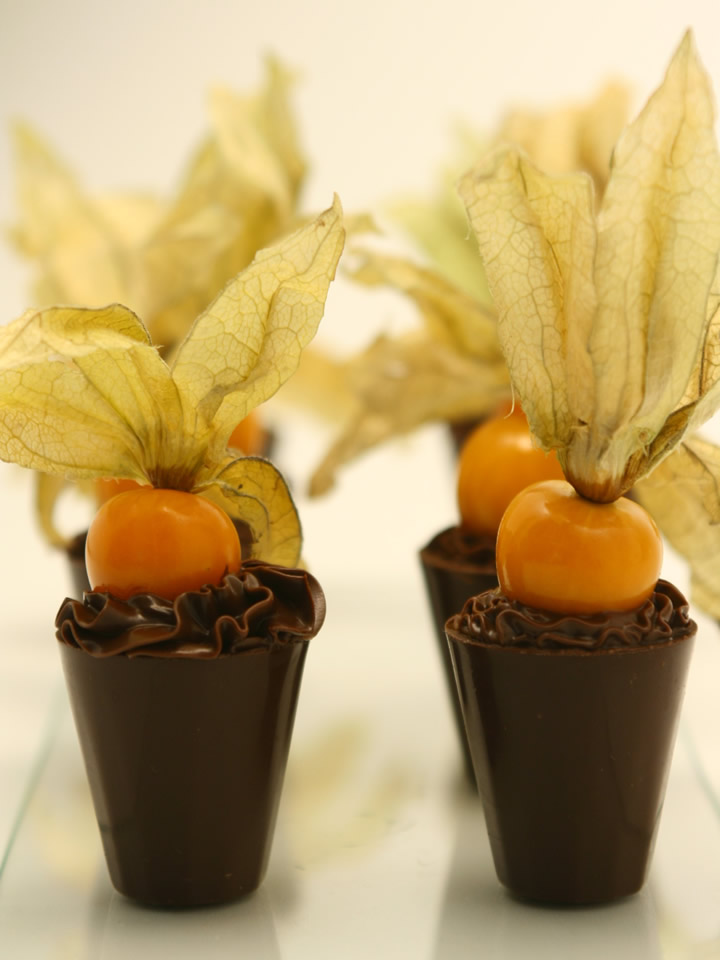 Copinho de Physalis
