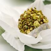 Ouriço de pistache - Doce de gemas banhado em calda de caramelo e envolto em pistache picado.